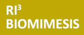 RI3 BIOMIMESIS